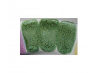 Specijalna boja 100g B trulo zelena