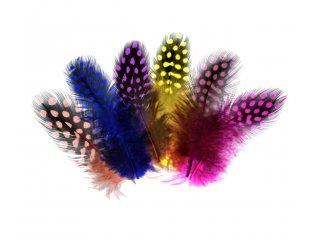 Perje za dekoraciju 24/1 razne boje