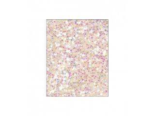 Glitter iridescentni 40g
